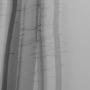 Bomen 08.jpg