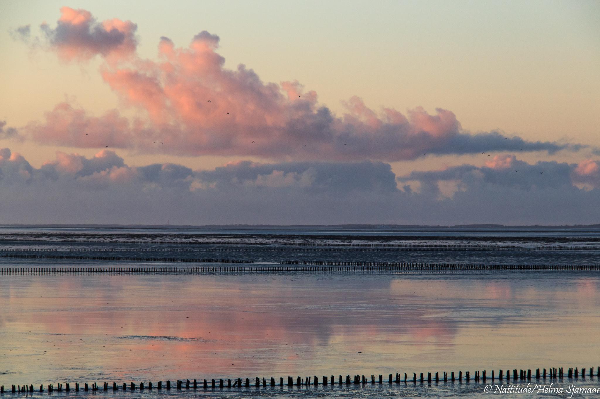 20191225-Ternaard-zonsondergang-4