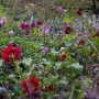 20191026-Giverny-herfst-10