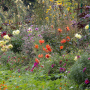 20191026-Giverny-herfst-20