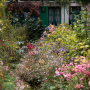 20191026-Giverny-herfst-24