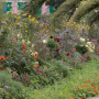 20191026-Giverny-herfst-26