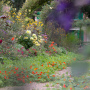 20191026-Giverny-herfst-27