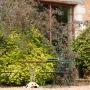 20170815 Jardin Francois 0001-2243