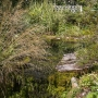 20170815 Jardin Francois 0001-2186