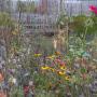 2019-10-Jardin-Plume-36