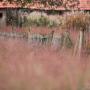 2019-10-Jardin-Plume-58