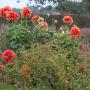 2019-10-Jardin-Plume-15