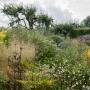 TU FR Jardin Plume-0922