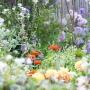 TU FR Jardin Plume-0945